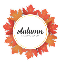 autumn sale banner with trendy autumn lettering vector image