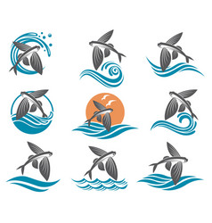 Flying fish set vector