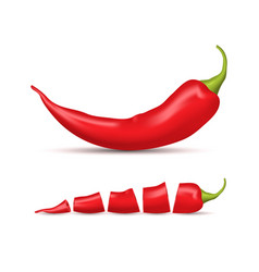 realistic detailed 3d whole red hot chili pepper vector image