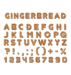 set gingerbread dark brown cookies tasty vector image