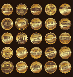 Set gold and brown retro vintage labels vector