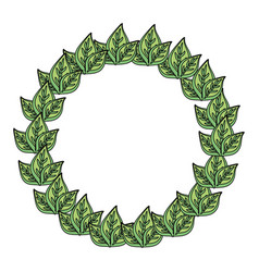 wreath leaves isolated cartoon vector image