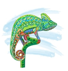 Hand drawn colored doodle outline chameleon vector image