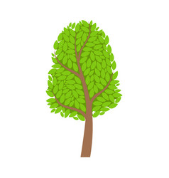 season tree with green leaves element of a vector image vector image