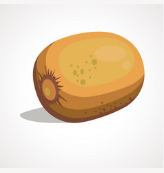 cartoon of kiwi vector image
