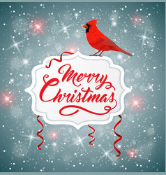 Christmas banner with red cardinal vector