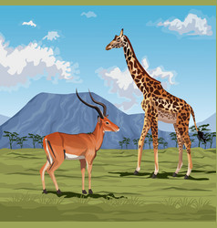 Color scene african landscape with gazelle and vector