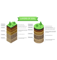 Education isometric diagram and detailed vector