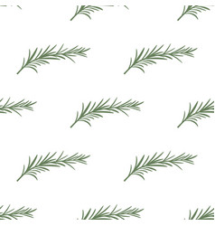Pattern with rosemary vector