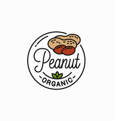 peanut nut logo round linear peanut on white vector image