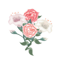 set of roses and pink white and purple tulips vector image