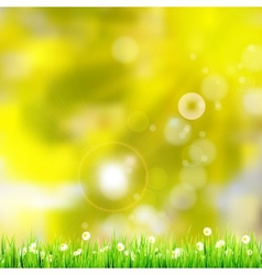 Natural green background EPS 10 vector image vector image