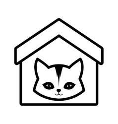 cat feline curious small house pet outline vector image