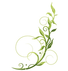 Asian bamboo vector