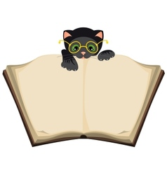 Cat reading open Book vector image vector image