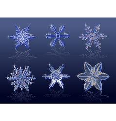 Real snowflakes vector