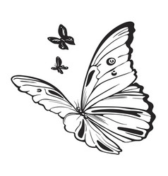 butterflies black and white vector image