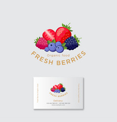 Fresh berries logo blackberry blueberry strawberry vector