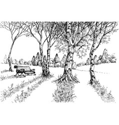 Garden in the sunlight drawing a bench in the park vector