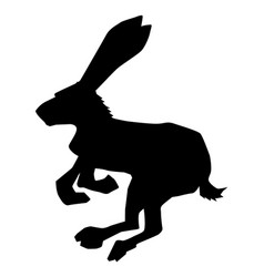 Hare symbol of cowardice vector