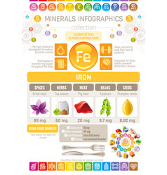 Iron mineral supplements rich food icons healthy vector