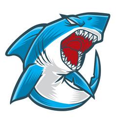 Shark angry blue vector