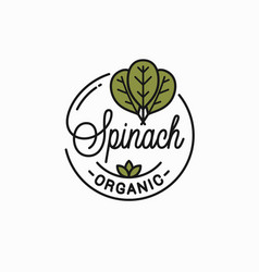 spinach leaves logo round linear vector image