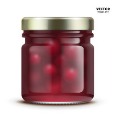 jam jar glass mockup isolated vector image