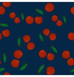 Fruits cherry seamless patterns vector image vector image