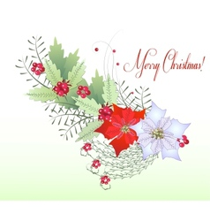 Christmas Branch with Berry vector image vector image