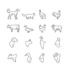 farm animal and birds thin line icons vector image