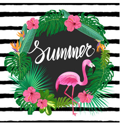 bright summer template with tropic plants vector image
