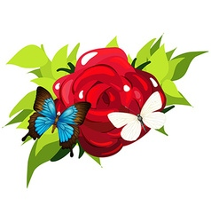 Butterflies flying around the rose vector image