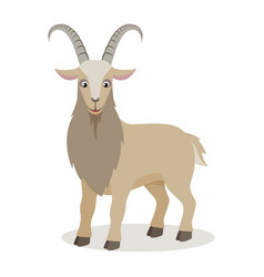 cartoon goat in different poses in flat style vector image