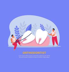 orthodontist flat dental background vector image
