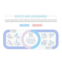 website banner and landing page spices and vector image