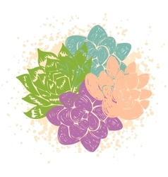With succulents vector