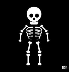 skeleton on a black background vector image