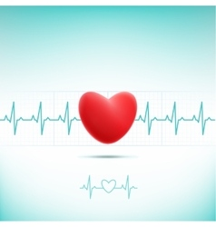 red heart cardiogram vector image vector image
