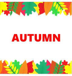 autumn banner with multi-colored leaves vector image