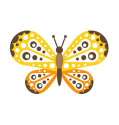 colorful beautiful butterfly with open wings vector image