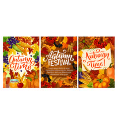 Fall fest posters with harvest and autumn leaves vector