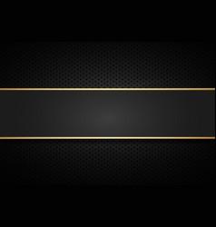 golden line banner gold dark background vector image