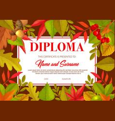 kids diploma with autumn leaves oak birch rowan vector image