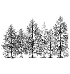 Pine forest hand drawn border vector