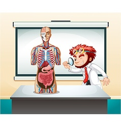 Scientist and human anatomy model vector