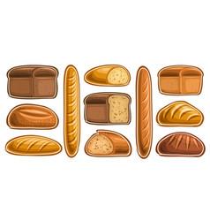 Set assorted bread vector