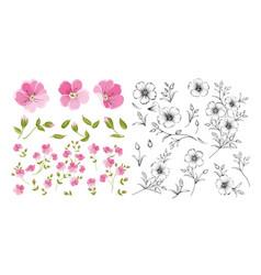 set linum flower elements collection flax vector image