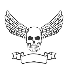 skull with wings isolated on white background vector image