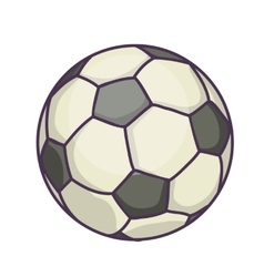 Soccer Ball or football vector image vector image
